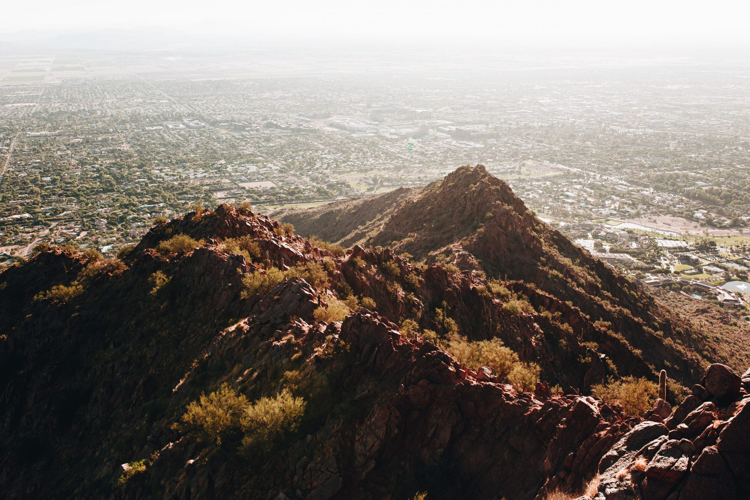 Arizona Recreational: How to Buy Compliant Packaging